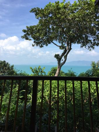 Six Senses Samui: View from outside sitting area