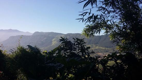 Deltota, Sri Lanka: View from the hotel garden