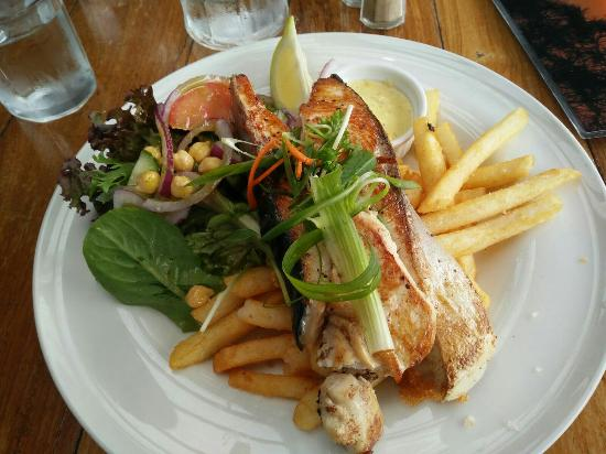 Tuross Head, Australia: King Fish and Octopus salad