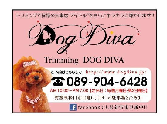 Trimming Dog Diva