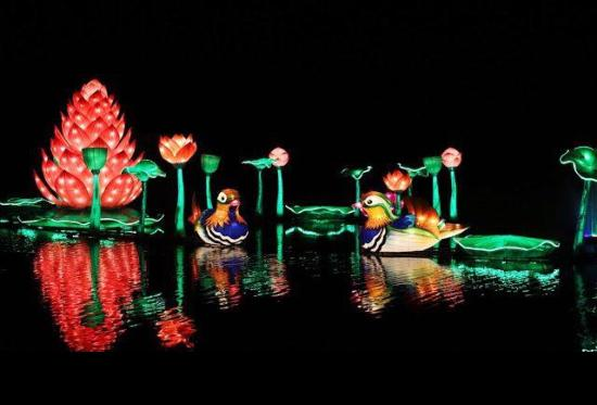 Chittoe, UK: Longleat Festival of Lights