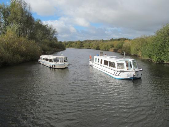 Waveney Stardust