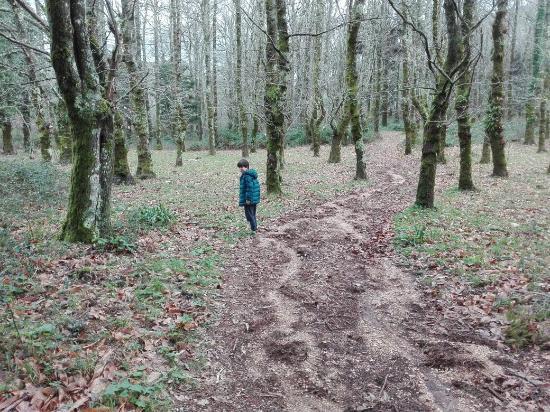 Alenquer, Portugal: Serra de Montejunto