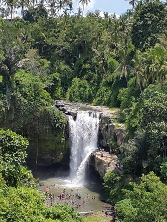 Ubud Dedari Villas: Tegenungan Weterfall, 15 min from Dedari