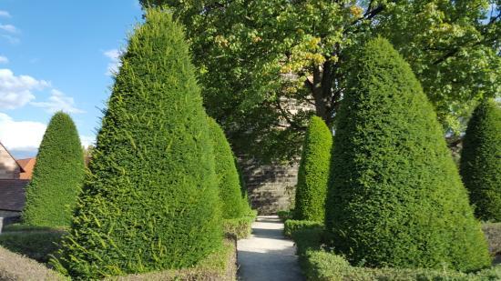 Bürgermeistergarten