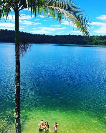 Lake Barrine Rainforest Cruise and Teahouse: photo0.jpg