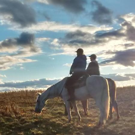D & K Ranch: Sunset on the trail