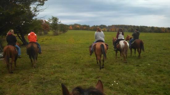 Lodi, Нью-Йорк: Finger Lakes Trail