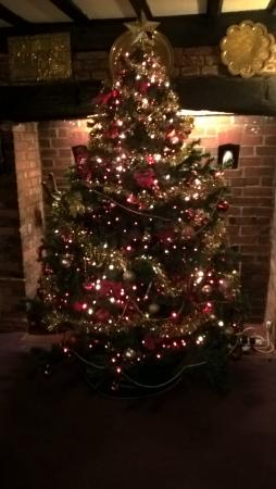 Grange House Hotel: The Tree