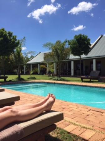 Mooiplaas Guesthouse: Pool area