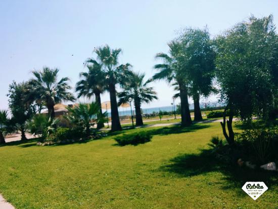 Gumuldur Resort: Widok z tarasu na ogród