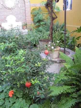 Alora, Spanien: Dans le jardin