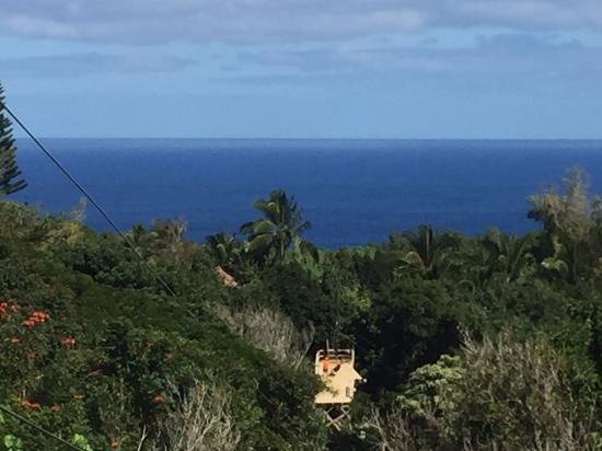 ไฮกุ, ฮาวาย: View from zipline platform of Maui coast