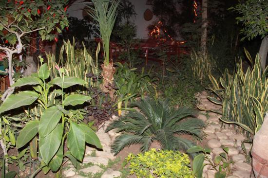 Amon Hotel Luxor: Garden restaurant