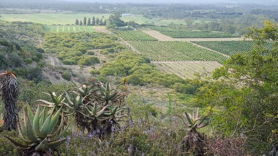 Addo, Sydafrika: 20151230_174942_large.jpg