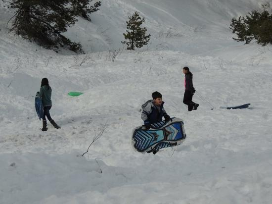 More sledding at Tamarack Lodge at Bear Valley