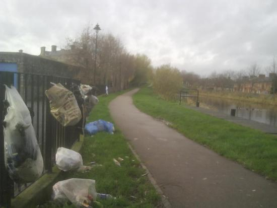 Royal Canal Park: One of a few piles of rubbish on the canal, a permanent feature in 2015 and into 2016..