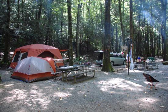 Desoto Falls: Double camp site gave us plenty of room to roam