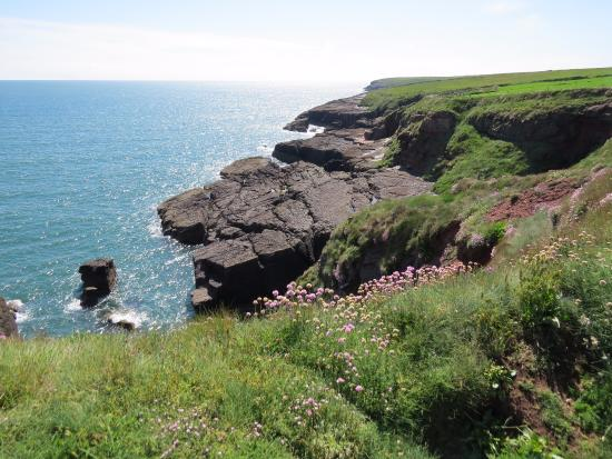 Taken along the Dunmore East coastal walk