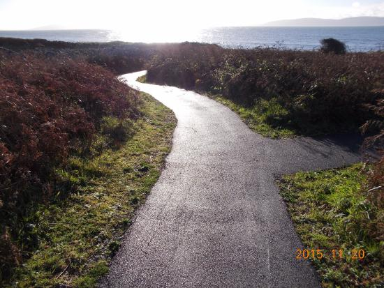 Furbo, İrlanda: Walk at back of Hotel