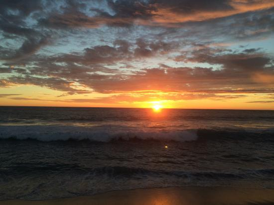 Las Palmas Tropicales: photo0.jpg