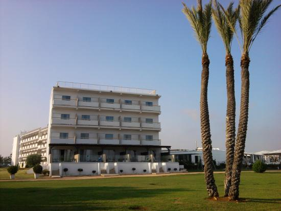 Asterias Beach Hotel: view to the hotel