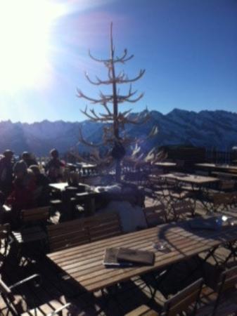 Weihnachtsbaum aus Geweihen - Picture of Schneekarhutte, Mayrhofen ...