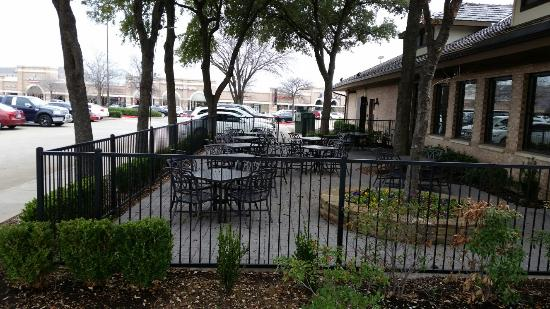 Irving, TX: 20160106_115642_large.jpg