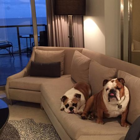 The St. Regis Bal Harbour Resort: Bruno and Rocco