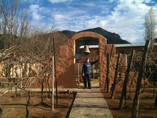 Urique, Mexico: Parte trasera del hotel, el viñedo