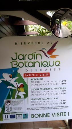 Tarif Du Jardin Picture Of Jardin Botanique De Deshaies Deshaies