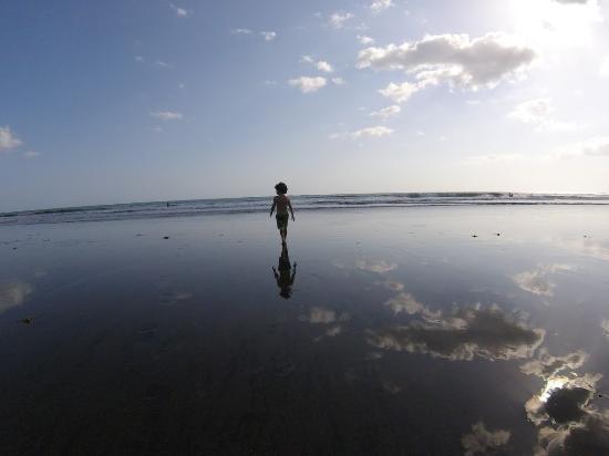 Hotel Playa Cambutal: The Beach