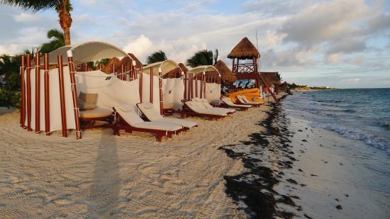 The Beloved Hotel: Beach at sunrise