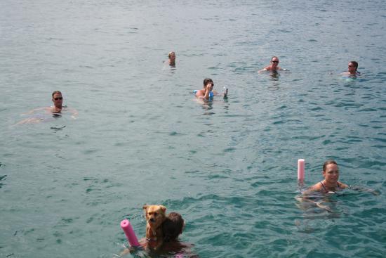 bahía de Simpson, St Martin / St Maarten: Just floating