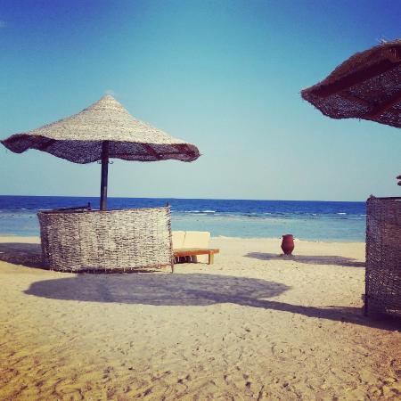 Port Ghalib Resort: Toller Strand