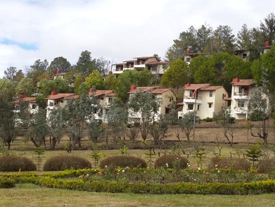 Altocerro Villas, Hotel & Camping : Parte del área verde