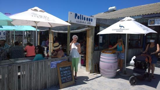 Струисбааи, Южная Африка: Pelicans - a hot summer's day