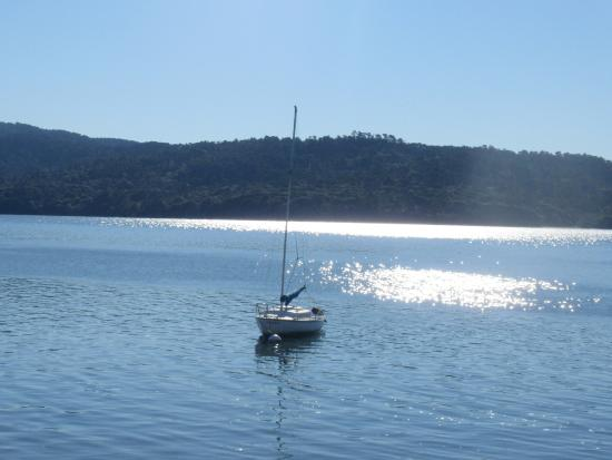Tomales Bay State Park: Tomales Bay Point, Point Reyes Station, Ca