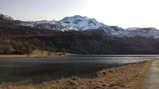 Silvaplana, سويسرا: Monti innevati sul lago Silvaplana