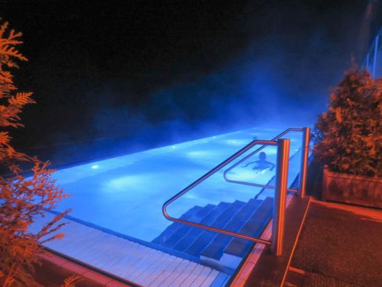 Schloss Elmau Luxury Spa & Cultural Hideaway: Salzwasserpool im Wald!