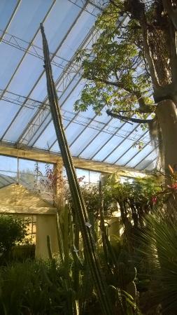 Jardín Botánico José Celestino Mutis - Picture of Jardin Botanico de ...