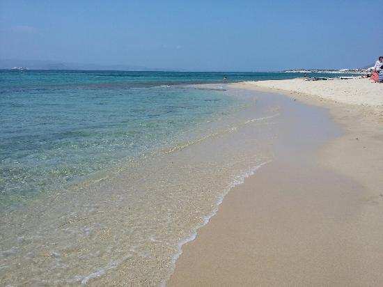 Agia Anna, Grecia: 20150809_122702_large.jpg