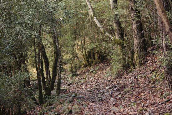 Villanova, Spagna: Excursión por el valle de Benasque