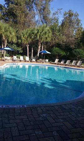Wyndham Cypress Palms: pool, 85 degrees