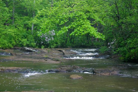 Palmetto, GA: Nature Trails
