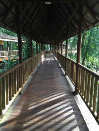 Hotel El Bambu: photo2.jpg