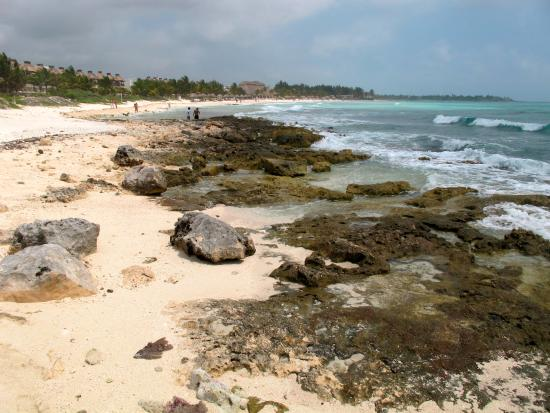 Hotel Akumal Caribe: Akumal beach 2013