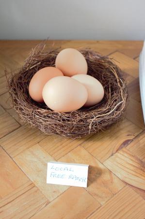 Sassafras, Австралия: Fresh eggs supplied on arrival