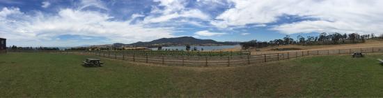 Landscape - Bangor Vineyard Shed Photo
