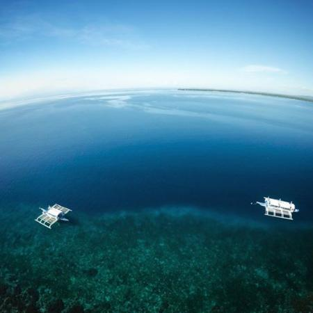 Cabilao Island, Filipinas: House Reef